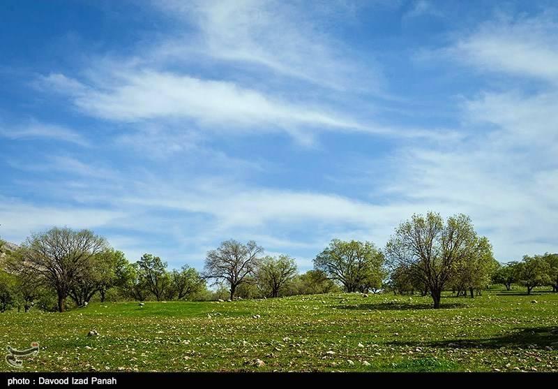 طبیعت بهاری منطقه گچساران