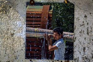 این تصویر هوایی یک شرکت قالیشویی نیست!