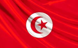 حمایت پارلمان تونس از ایران و حزب الله