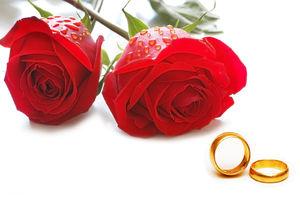فرار هالیوودی عروس ایرانی از سوئد+عکس