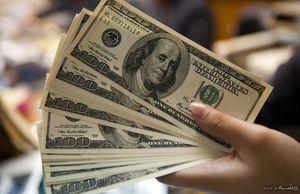 واردکنندگانی که دلار۴۲۰۰ گرفتند گرانفروشی میکنند