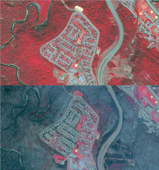 تصویر ماهوارهای از قبل و بعد آتشسوزی در مکموری کانادا که نشان میدهد پوشش گیاهی (نواحی قرمزرنگ) نابود شده است