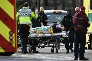 عکس/ حمله تروریستی به پارلمان انگلیس
