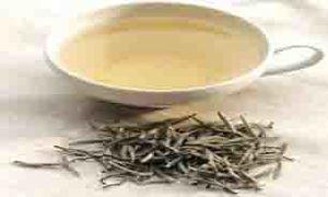 فواید چای سفید و تاثیر آن بر کاهش وزن