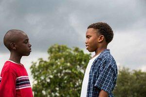 فیلم مهتاب - اسکار 2016