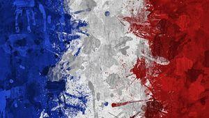 فرمانده ارتش فرانسه استعفا داد+عکس