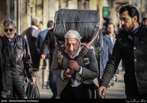عکس/ رزق حلال