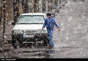 عکس/ بارش برف در اهر