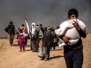 بازگشت 17هزار آواره عراقی به نینوا
