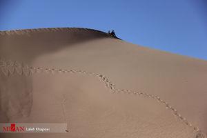 عکس/ بلندترین تپههایشنی دنیا