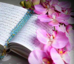 حدیث روز/ سخن امام صادق(ع) درباره کارهایی که باید در مسافرت انجام داد