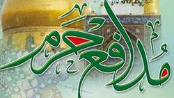 مدافعان حرم - مدافع حرم