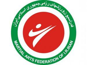 تصمیم بحث برانگیز وزارت ورزش!/فدراسیون ورزشهای رزمی و مشکلی به نام شورای ساماندهی سبکها