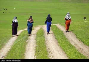 عکس/ جشنواره فرهنگ و اقتصاد در روستای آق قمیش