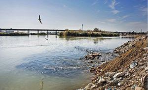 شیوع محدود بیماری شبه وبا در خوزستان!