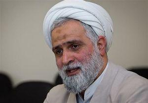 محمدیان: نقایص نظام انتخاباتی باید اصلاح شود