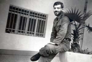 رضا چراغی
