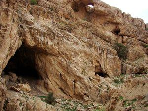 کشف غاری با کوهی از استخوان در اصفهان