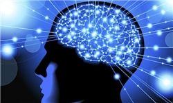 عوامل تغذیهای مؤثر بر حافظه