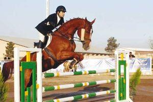 عکس/ کورس اسب دوانی گنبد