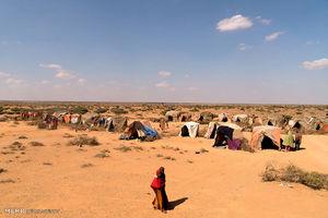 عکس/ مقابله با گرسنگی در سومالی