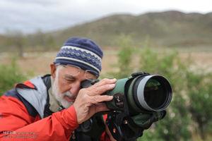 عکس/ حضور تیم پرنده نگری سوئدی در پارک ملی گلستان