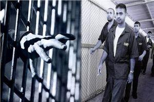 انتقال اجباری ۱۲۰اسیر فلسطینی به زندان النقب