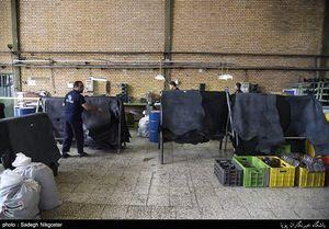 هزینه ۵ میلیون دلاری برای واردات کیف و چمدان+ جدول