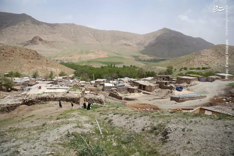 روستای چشمه درازه واقع در جنوب غربی کنگاور  با دشت های سر سبز و با صفا