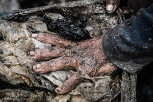 عکس/ زندگی در میان زباله ها در جاکارتا