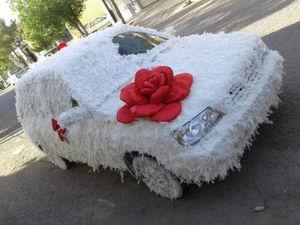 عکس/ ماشین عروس دیدنی با تزیین پرمرغ