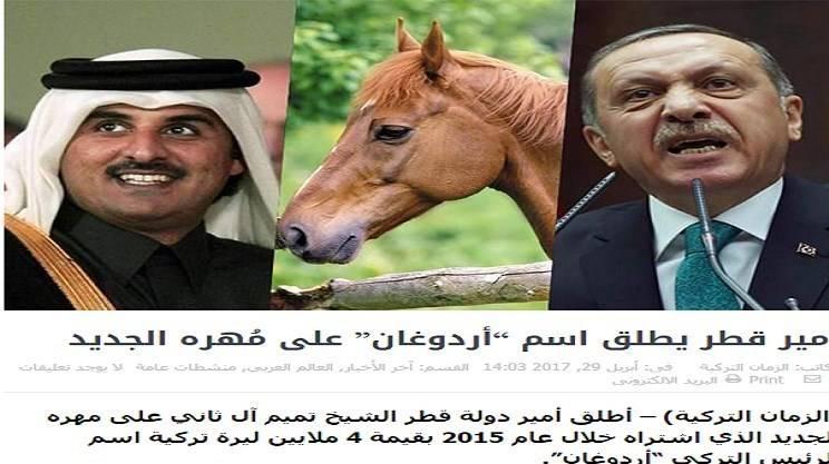 قیمت اسب فرانکل