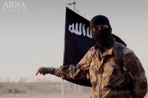 3320 داعشی در موصل کشته شدهاند