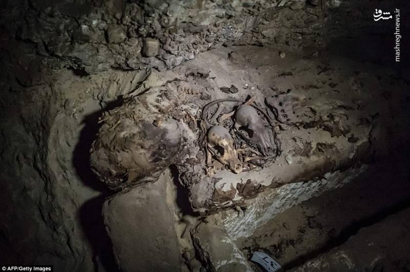کشف 17 جسد مومیایی شده در مصر