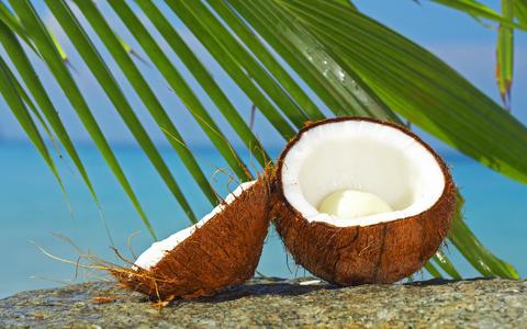 8 خاصیت درمانی نارگیل خشک