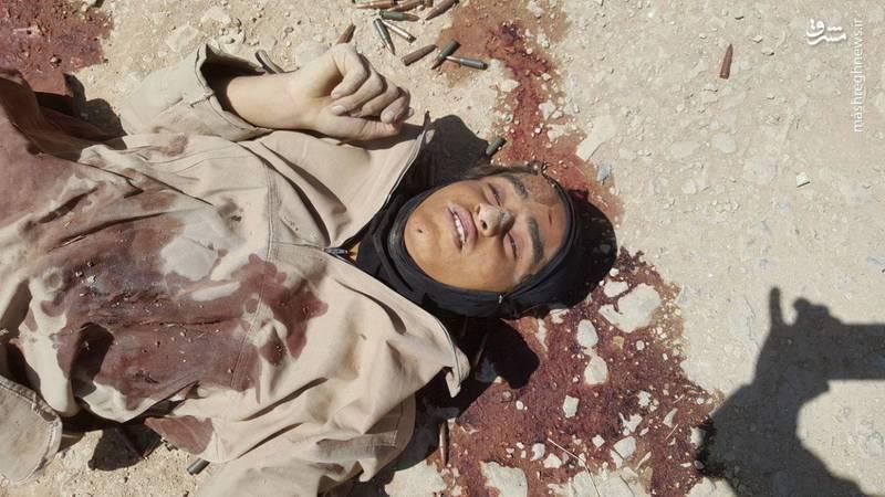 هلاکت داعشی ها