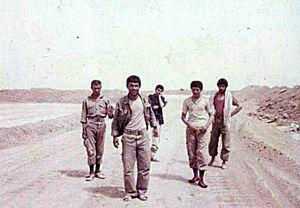 شهیدان احمد و محمود حق جو