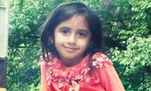 صدور حکم مقصران فوت الینای ۶ ساله