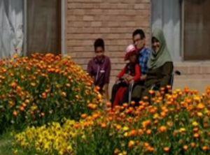 فیلم/ دو معلول عاشقی که بالاخره به هم رسیدند