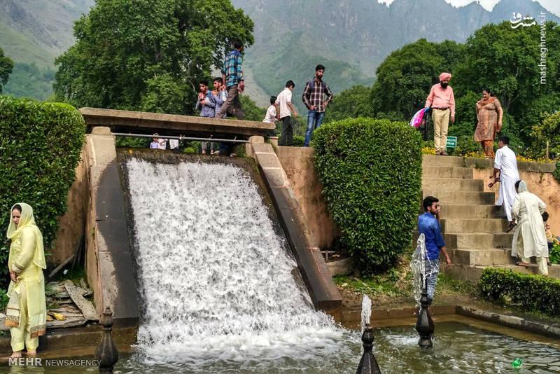 باغ نشاط کشمیر