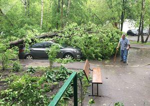 تعداد قربانیان طوفان مسکو به ۱۷ تن رسید