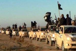 موسس شبه خبرگزاری داعش کشته شد