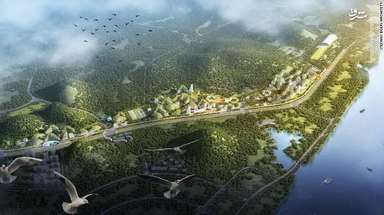 نخستین شهر جنگلی درچین