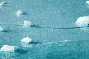 عکس/ آب شدن یخ های قطب شمال