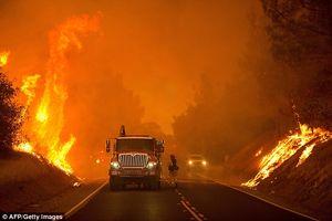 تخلیه صدها نفر در پی آتشسوزی در ملبورن