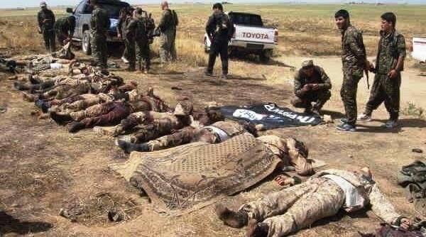 کشته-های-داعش-طی-نبردهای-موصل-5.jpg