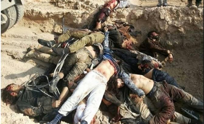 کشته-های-داعش-طی-نبردهای-موصل-4.jpg
