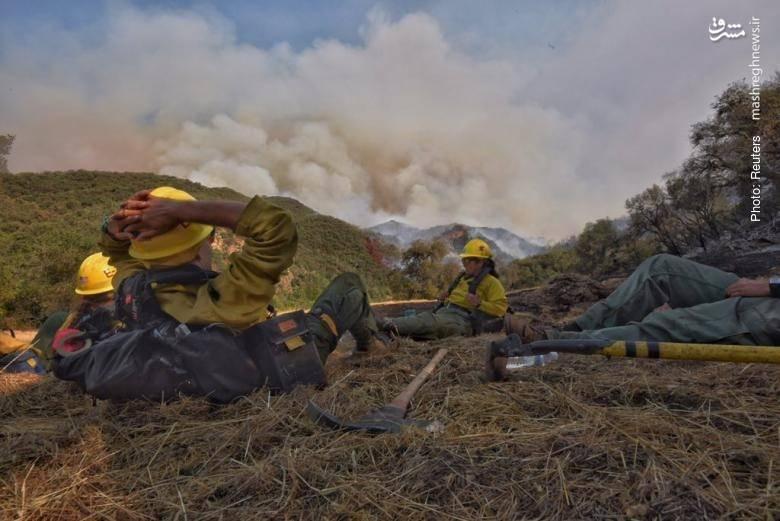 آتشسوزی در جنگلهای کالیفرنیا