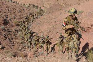 عملیات ارتش مصر در صحرای سینا
