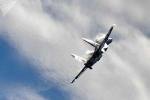 فیلم/ هنرنمایی خلبان میگ 29 در آسمان